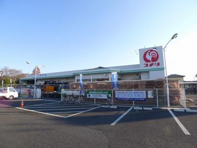 コメリ藪塚店まで1100m