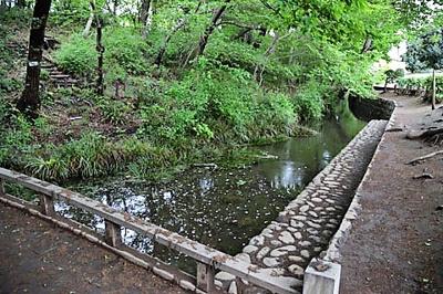八の釜の森緑地
