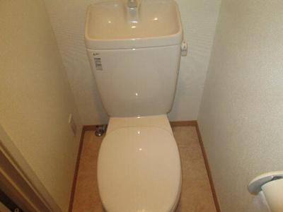 【トイレ】カーサセルロ
