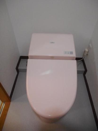 トイレは新品に交換済みです♪水周りが新品だと気持ちよく使用できてうれしいですよね♪最新式のタンクレストイレです