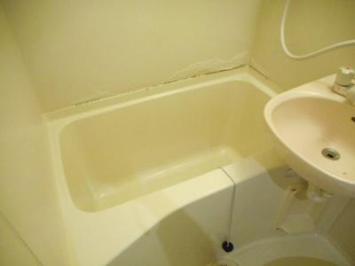 【浴室】あるゾウパレス富士見