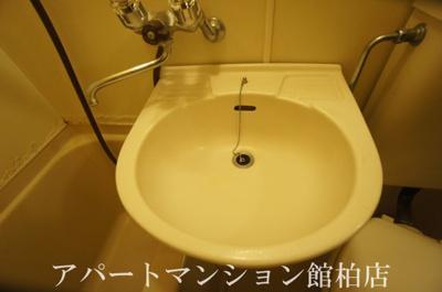 【洗面所】シーザースパレスⅡ