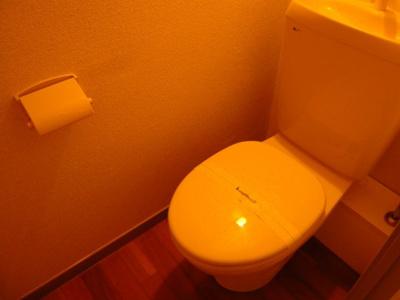 トイレも清潔です。