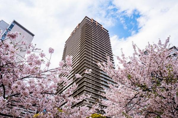 【外観】春には物件周辺に桜も咲きます♪