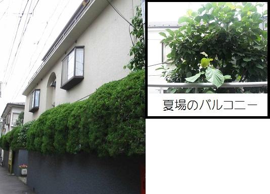 マンション太田 の画像