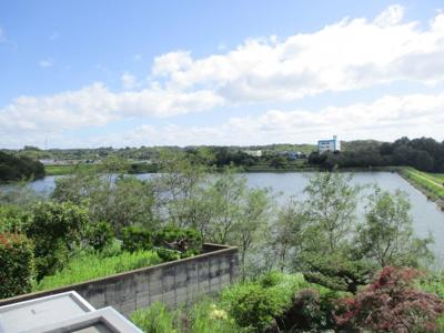池が見えます。周回は散歩コースになっています。