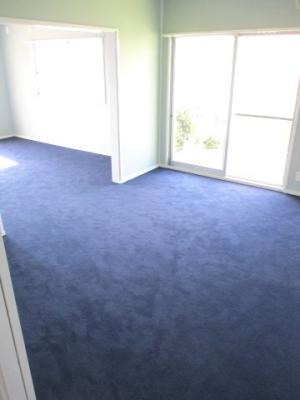 紺のじゅうたんが心地いいです。
