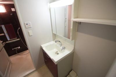 シャンプードレッサー付洗面台と室内洗濯パン