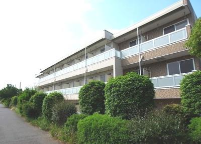 高田駅徒歩5分のマンションです。