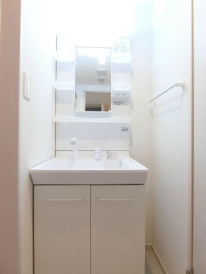 シャワードレッサー付きの洗面所です