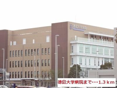 徳島大学病院さんまで1300m