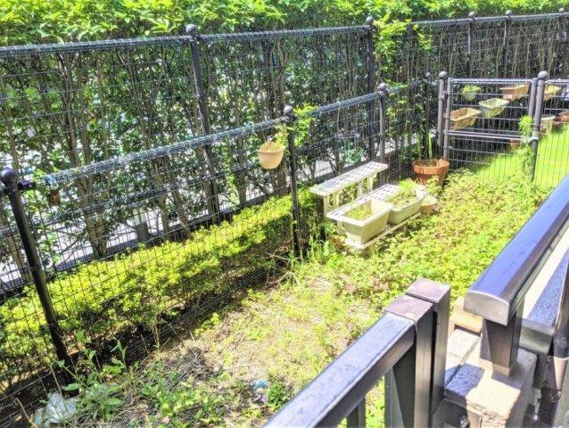 サンリット西新井:約11.6平米の専用庭画像です!