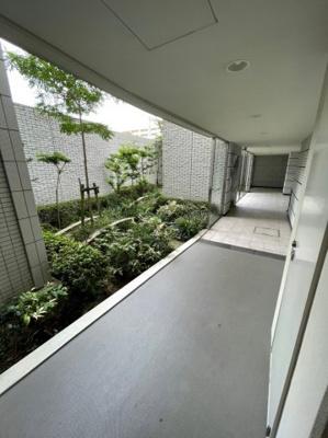 共用廊下には緑が生い茂っております。