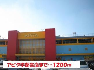 アピタ宇都宮店まで1200m