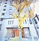 クレストフォルム横浜関内の画像