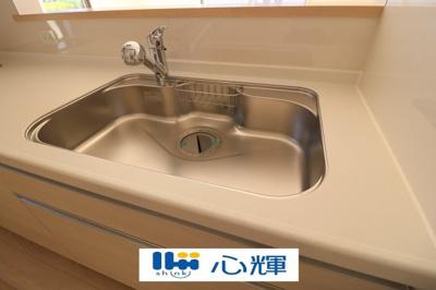 浄水器付きです。水栓は先端が引き出せるのでシンクの隅々まで水が届きます。