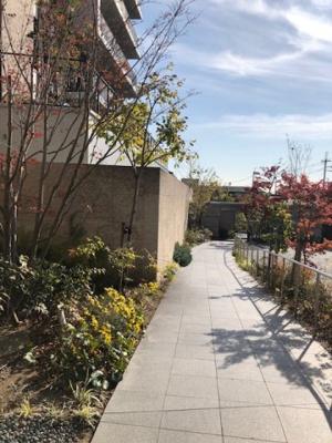 当マンションのエントランスロビーから出口に続くアプローチです。四季を感じられる植栽が手入れされており、春夏秋冬を体感できる嬉しいアプローチです。