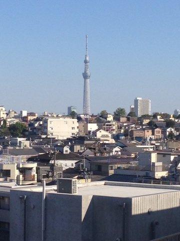 6階からの眺望です。