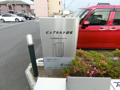 【エントランス】ピュア セルト森尾