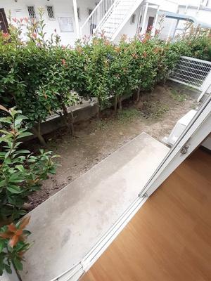 【庭】エバーグリーンかんぎⅡ