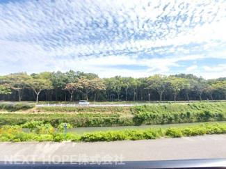 バルコニーからの眺望です♪目の前に広がる緑は昆陽池公園です!緑豊かな住環境です(^^)