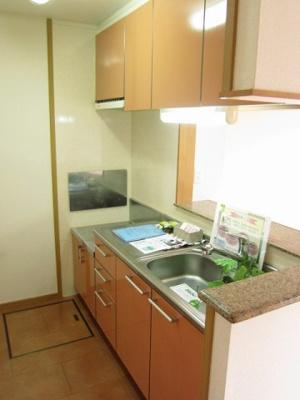 【キッチン】ExcelCourt東小羽山C