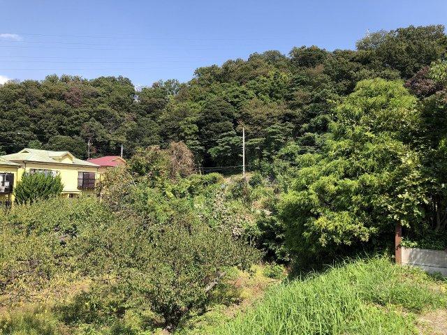 緑豊かで穏やかな住環境が広がっています。