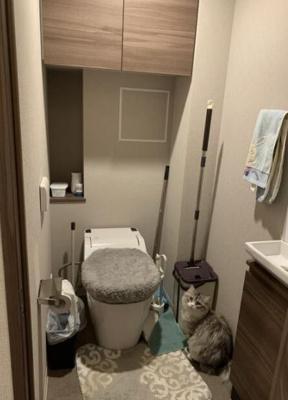 手洗場付のタンクレストイレ。