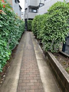 【設備】クリスタル・ハイツ青井