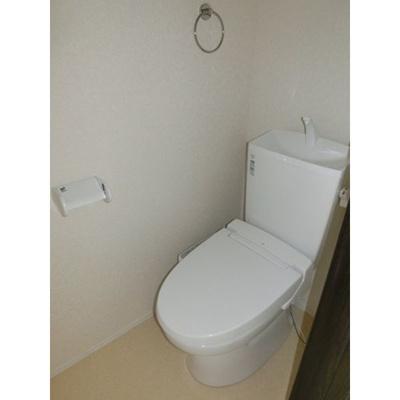 【トイレ】ネートル グルース