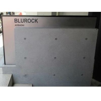 【エントランス】BluRock青葉台