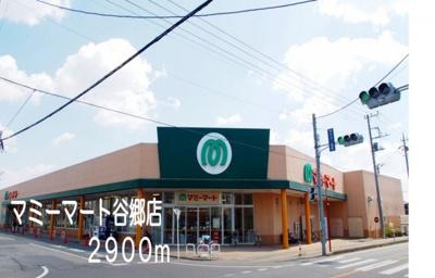 マミーマート谷郷店まで2900m