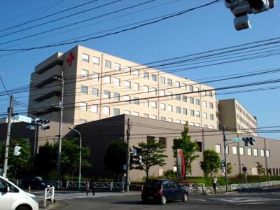 深谷赤十字病院まで3,895m