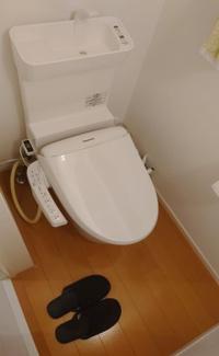 毎日使う場所だからこそ使い勝手を考慮したトイレ。