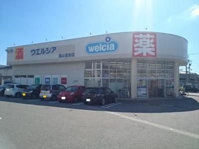 ウエルシア富山豊田店まで30m