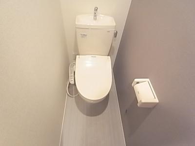 【トイレ】AMETRINE