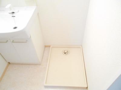 B201 室内洗濯機置場