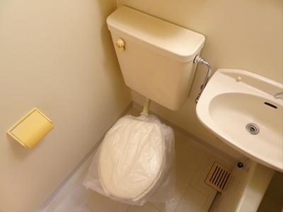 【トイレ】シェモア2