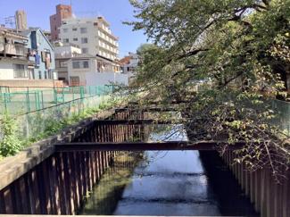 石神井川: 現在、大掛かりな拡幅工事が進行しています。緑の広場と遊歩道になる予定とのことです。