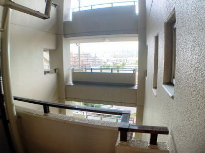 廊下からの眺め