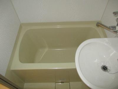 【浴室】シータイガー1