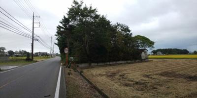 芳賀町西高橋