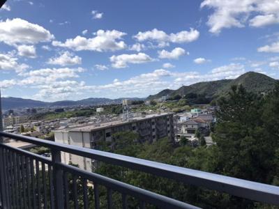 【駐車場】ラブリー日吉台