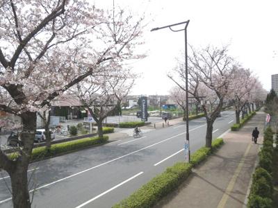 【展望】クレスト久米川