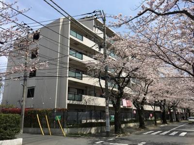 【外観】カーサグラン松戸