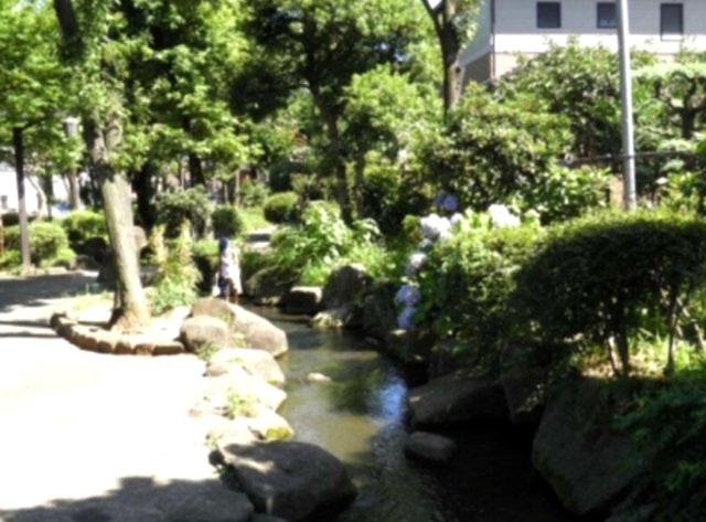 「見沼代親水公園」まで約800m~かつて農業用水として区の農業を支えていましたが、その役割を終えた用水は、昭和59年4月、憩いの場として親水公園が誕生