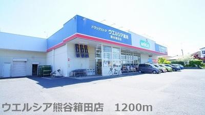 ウェルシア熊谷箱田店まで1200m