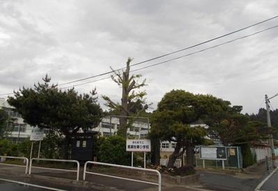 東松島市立鳴瀬桜華小学校まで850m