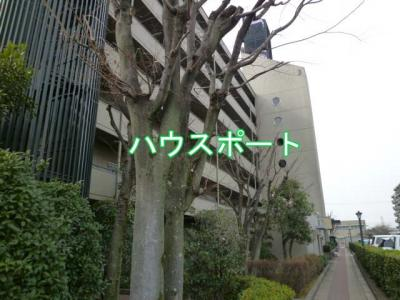 【外観】ユニ宇治マンション3号館