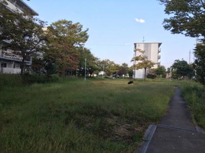 【その他共用部分】びわ湖美空第二団地8号棟
